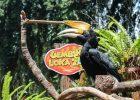Harga Tiket Masuk Gembira Loka Zoo Februari 2021