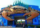 Harga Tiket Masuk Wisata Bahari Lamongan Maret 2021