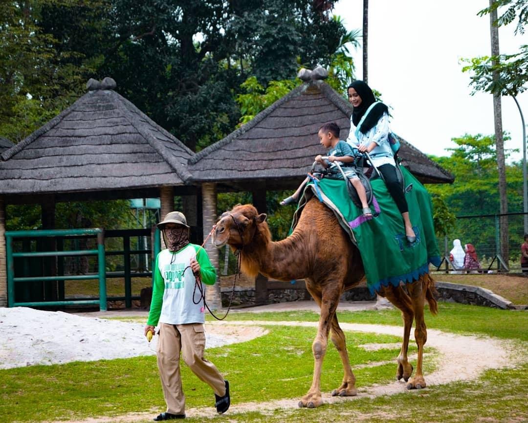 Wahana Ragunan Wisata Jakarta