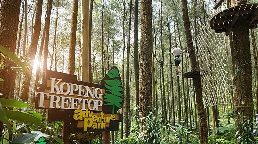 Kopeng Tree Top Adventure Park