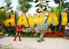 Harga Tiket Masuk Hawai Waterpark Malang Februari 2021