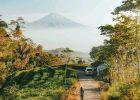 Wisata Populer dan Rekomended Kebun Teh Nglinggo Kulonprogo Jogja