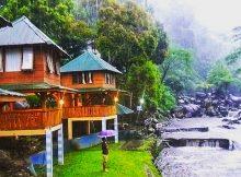 Berasa di Luar Negeri Desa Wisata Ketenger Villa Bayan Banyumas