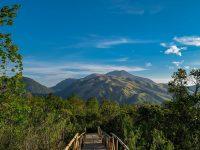 Bukit Sakura Lawu Karanganyar 200x150